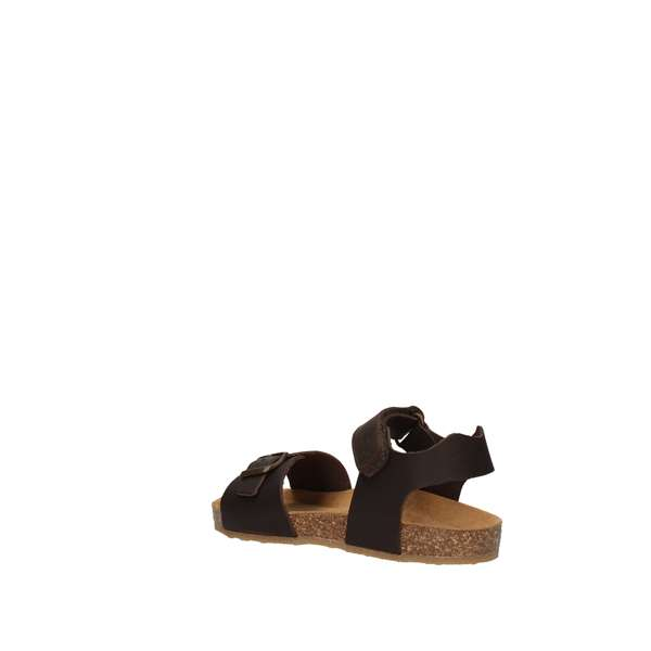 BALDUCCI Low Brown