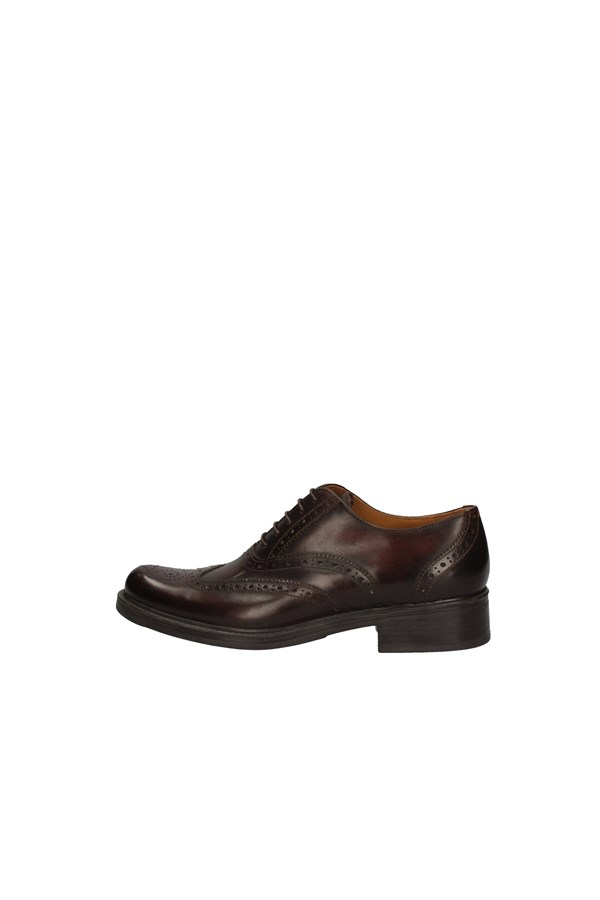 CAMPANILE Derby BROWN