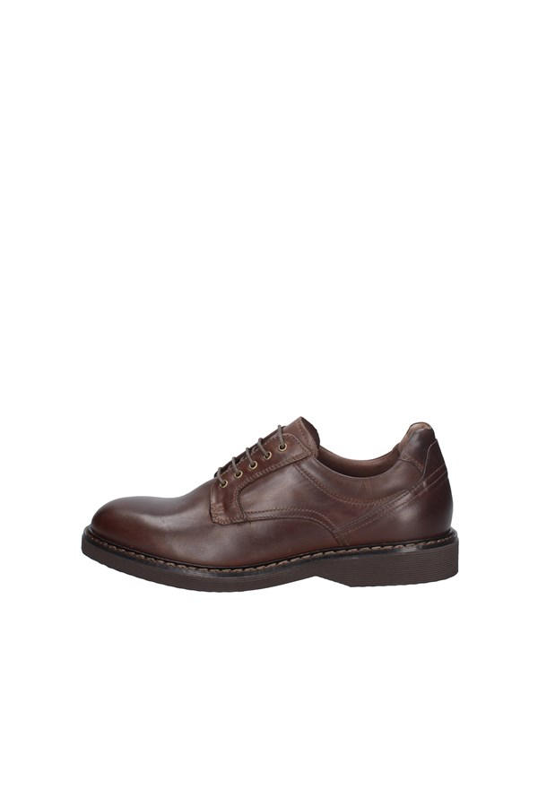 NERO GIARDINI Oxford BROWN