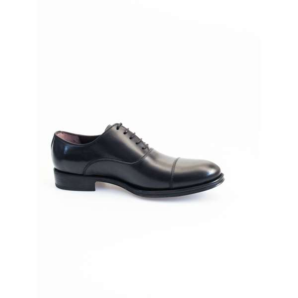 CALPIERRE  Laced Oxford Man T251-F 2