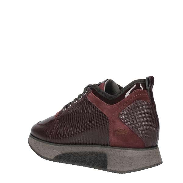 ALBERTO GUARDIANI Sneakers  low Women SD57545D 1